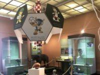 Необычные выставки Москвы о футболе: от слонят до архитектурного авангарда